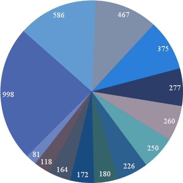 pie-chart-big